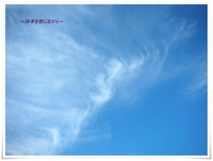 DSCN0135_convert_20120928112653.jpg