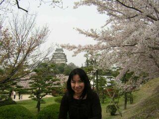 姫路城桜の季節直美