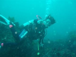 20070707紀伊大島海中直美