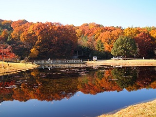 20131203三木山森林紅葉池1