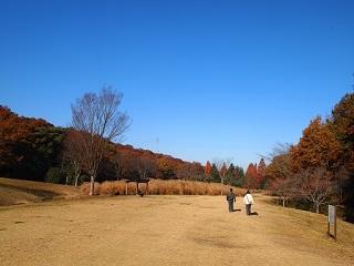 20131203三木山森林紅葉夫婦