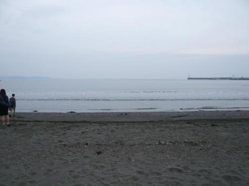P1130011.jpg