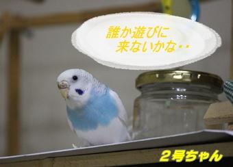 IMG240614-2.jpg