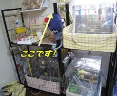 IMG240722-3.jpg