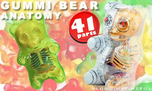 blogtop-gummibear-anatomy-top.jpg