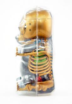 gummibear-anatomy-11.jpg