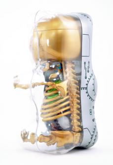 gummibear-anatomy-12.jpg