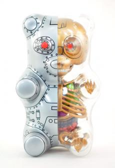 gummibear-anatomy-14.jpg