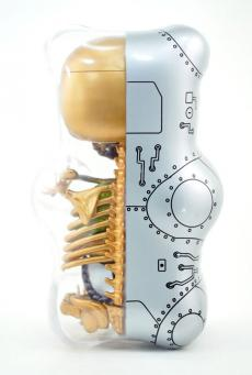 gummibear-anatomy-15.jpg