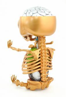 gummibear-anatomy-20.jpg