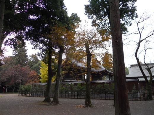 鷲宮神社7