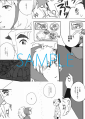sample123-3.png