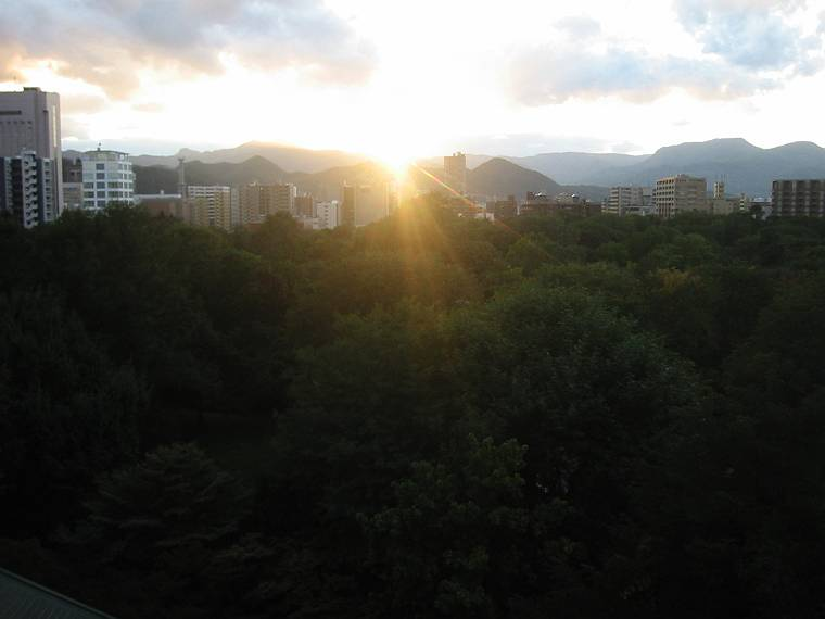 本日10月15日午後4時半ころの北大植物園