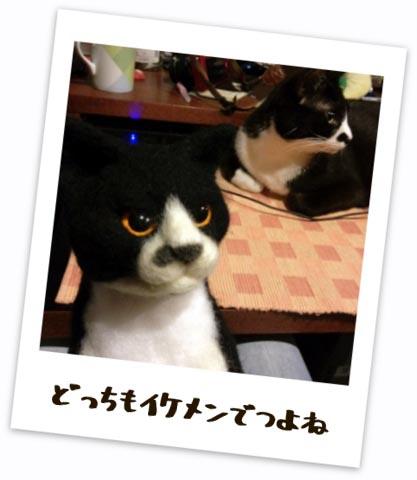 20120517_kuro_kuro.JPG