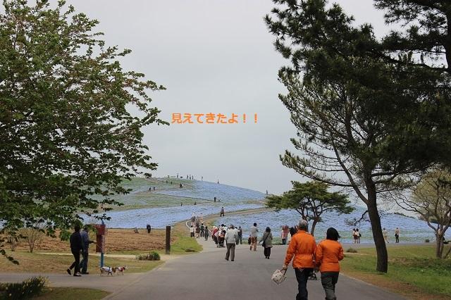 IMG_7428.jpg