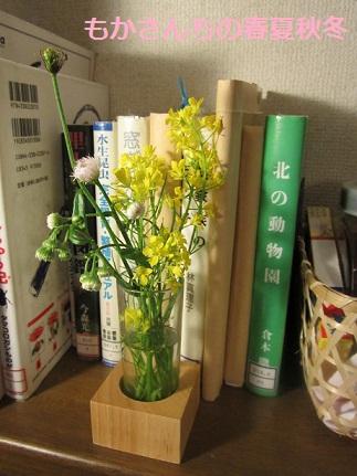 むすこの花2