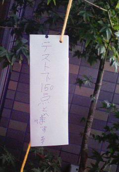 tanabata24