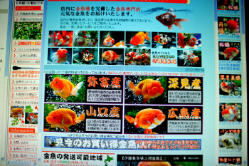 2012.5.21ブログ画像 (16)
