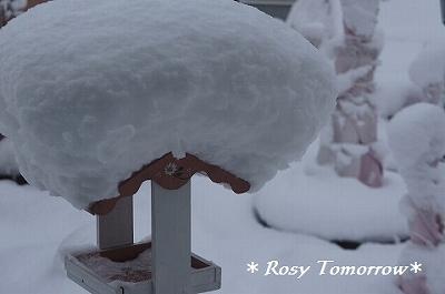雪の文金高島田