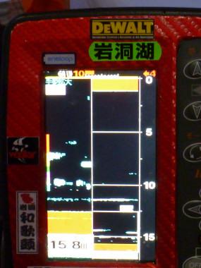 P1130123.jpg