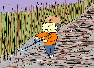 キクイモ畑作業