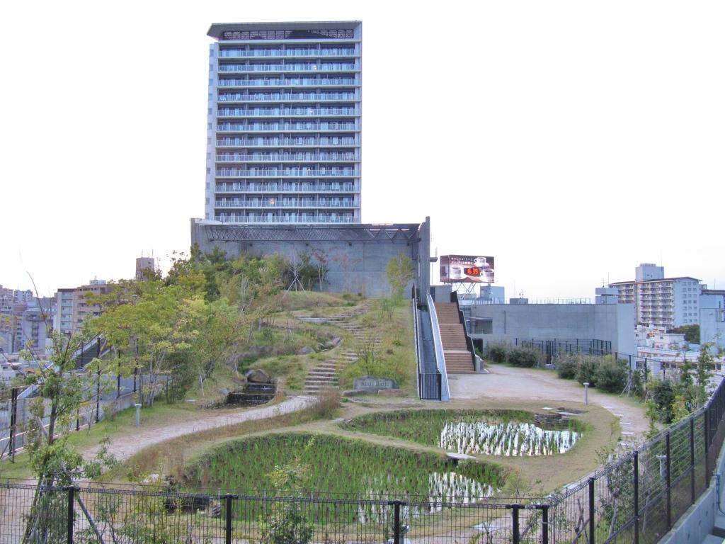 池尻ジャンクション (25)