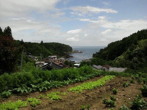 船越地区 のどかな風景
