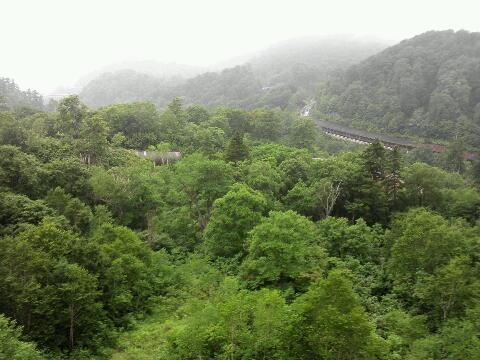 山岳ステージ②