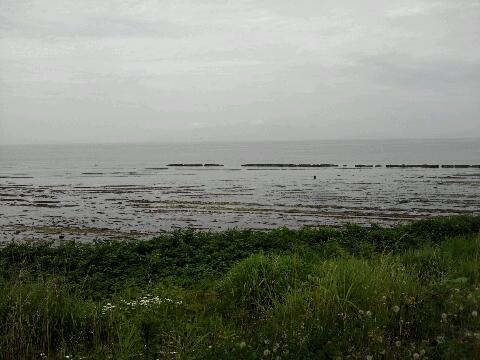 岩礁の海岸
