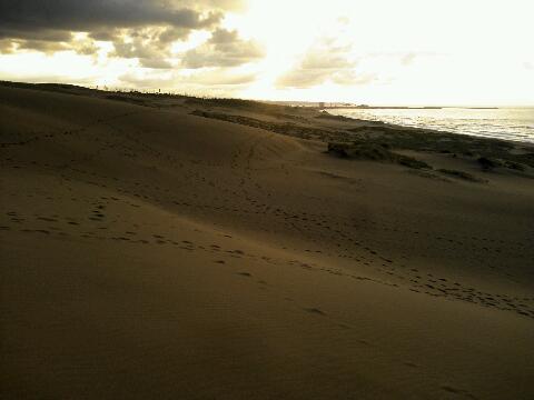 鳥取砂丘一
