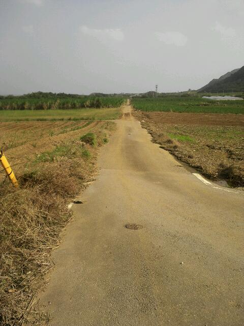 石垣 田舎道①