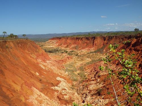Madagascar (166)