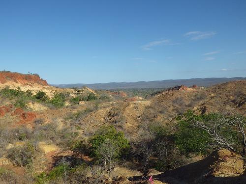 Madagascar (172)