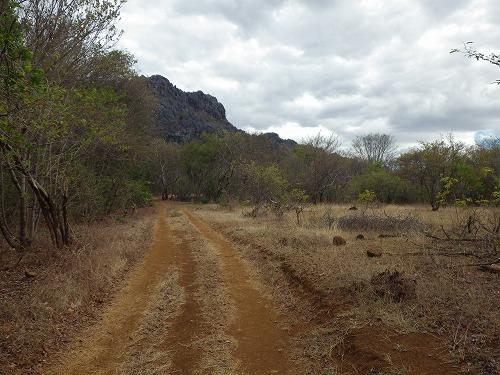 Madagascar (226)
