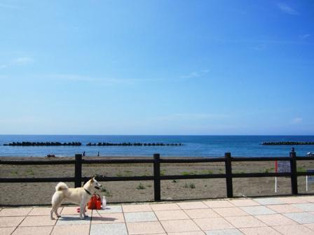 @浜中海水浴場