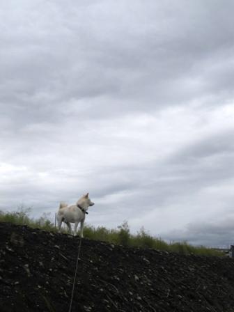 曇り空は飽きました