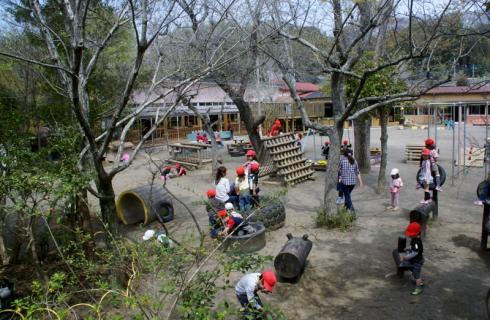 2006-11-04 25年度4月園庭風景、めだか 009 (800x522)