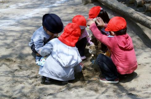 2006-11-14 25年4月15,16日園庭風景 027 (800x523)