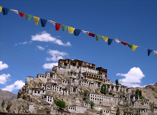 free-tibet-free.jpg