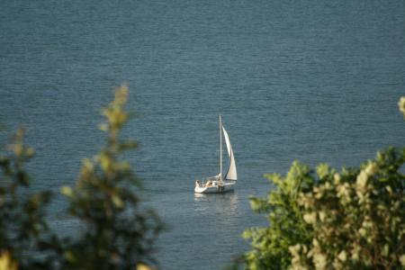 yacht_con.jpg