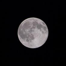 $Juanaの歌-満月