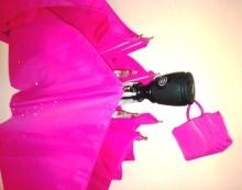 $Juanaの歌-折りたたみ傘