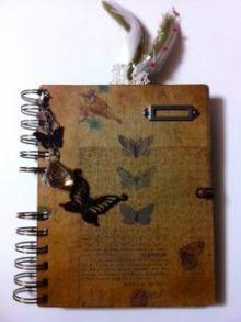 Juanaの歌-resent book