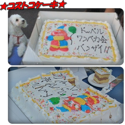 0505コストコケーキ