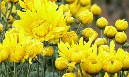 yonn4_20121221085325.jpg