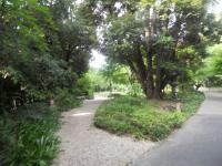 DSCN1201_20120830194639.jpg