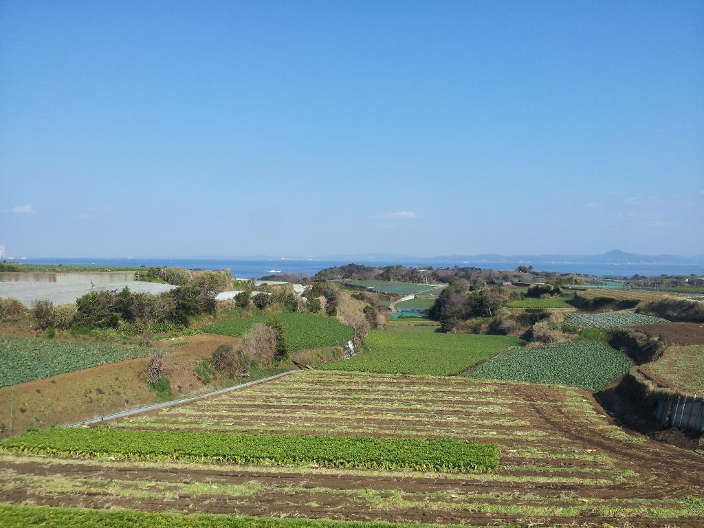 三浦半島 (1)