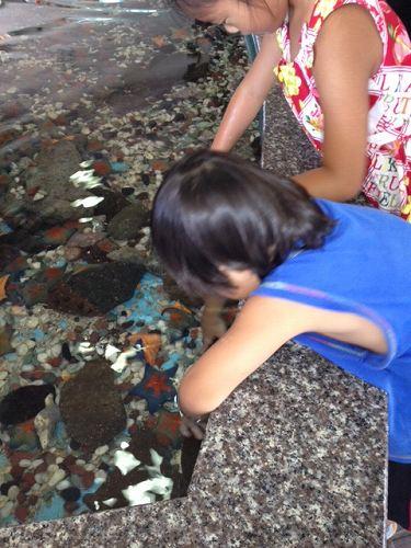 ペンギン水族館14