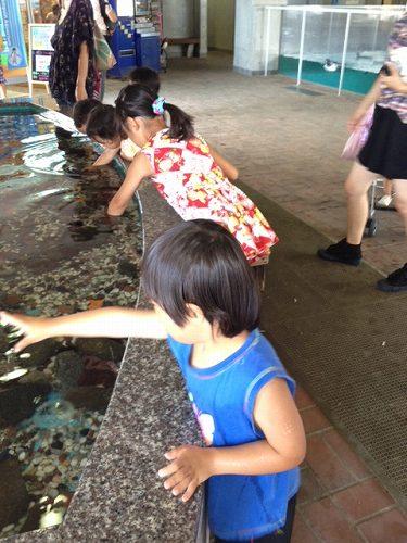 ペンギン水族館15