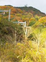 20121201_SBSH_0001.jpg